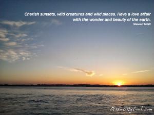 Cherish sunsets wild creatures wild places _ Stewart Udall