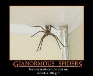 Gianormous spider