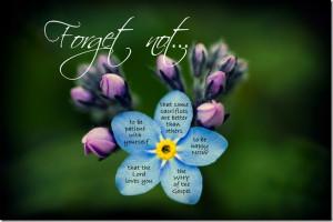 Forget-Me-Not, by Elder Dieter F. Uchtdorf