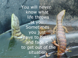 ... fight whatever struggles problems challenges trials life throws at you