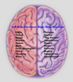 myth 1 left brained people are organized right brained people are ...