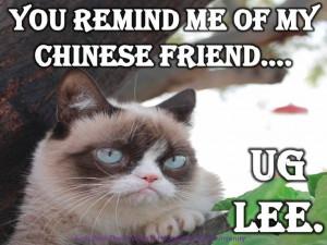 Grumpy Cat Quotes #GrumpyCat #Meme #Humor