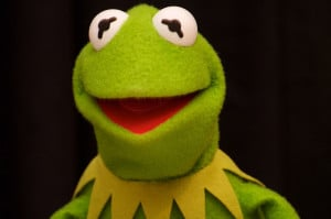 Kermit The Frog Funny Quotes