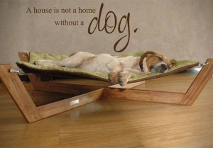 Dog's Purpose - FB