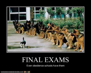 Funny College Final Exam Quotes Funny college .