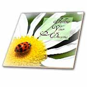 ... Follow Your Dreams Ladybug and Daisy Flower Inspirational Quotes Tile
