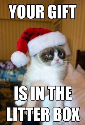 Grumpy Cat Gift. I think I know what it is