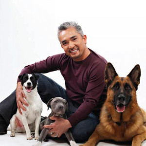 Cesar Millan with Dogs
