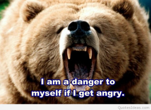archives 2015 wallpaper bear anger bear wallpaper with anger quote