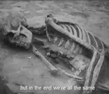 funny skeleton tumblr