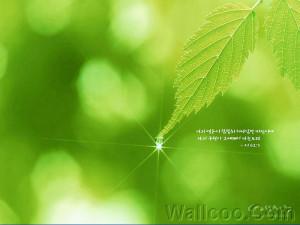 bible verse wallpaper. -wallpaper-Bible-verses-