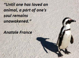 Famous quotes about animals 1