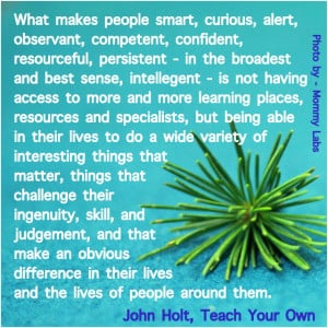 Visual Reflections on Learning and Children: John Holt Quotes