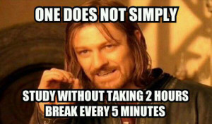 funny-picture-study-break-time-Boromir