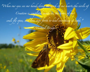 Daylily Quotes