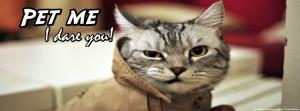 Bad mood grumpy funny cat facebook cover