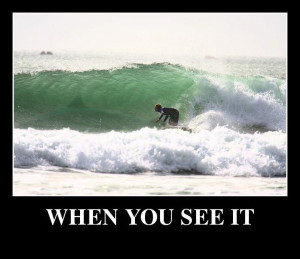 Funny Surfing