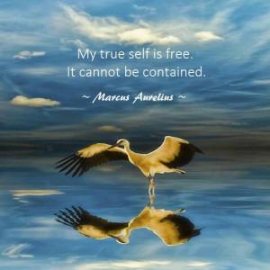 Zen-and-Tao-Quotes-Quote-2.jpg