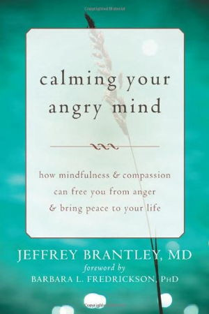 The Anger Fallacy Uncovering the Irrationality of the Angry Mindset by ...