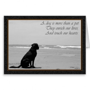 Death of a pet, dog death, sad, dog looking out greeting card