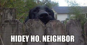 hello neighbor dog