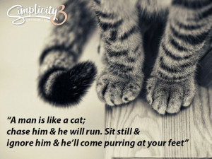 Men are like cats... #love #quote