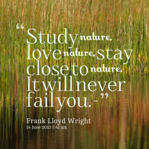 Quotes Picture: study nature, love nature, stay close to nature it ...