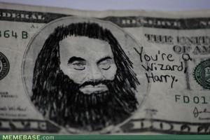 You-re-a-wizard-Harry-harry-potter-vs-twilight-21412640-500-334.jpg