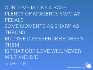 OUR LOVE IS LIKE A ROSE PLENTY OF MOMENTS SOFT AS PEDALS SOME MOMENTS ...
