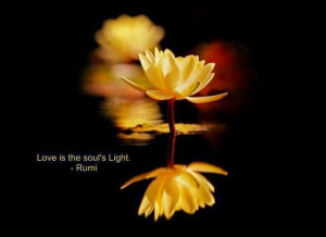 Rumi Quotes, Love Quotes, Soul Quotes, Light Quotes, Quotes on Soul ...