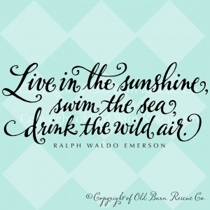 Vinyl Wall Decal - Live in the sunshine... from Old Barn Rescue ...