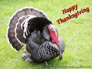 Happy-Thanksgiving-quotes-wishes-turkey | YourBirthdayQuotes.com