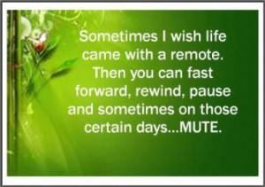 Sometimes I Wish I Had A Mute Button