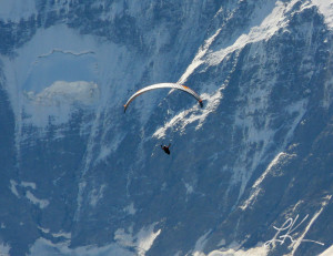 Photo of paraglider. Copyright © 2013 Laura K Kerr, PhD. All rights ...