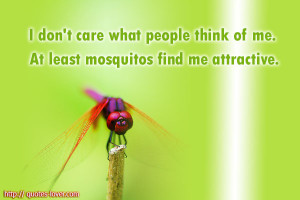 don't care what people think of me. At least mosquitos find me ...