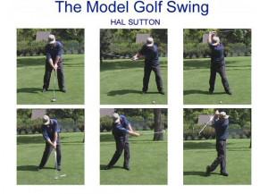 Swing the Golf Club like a Pro!