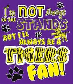 TIGER FAN IS WHAT I AM!! More