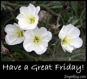 Glitter Graphic Comment: Have A Great Friday White Flowers