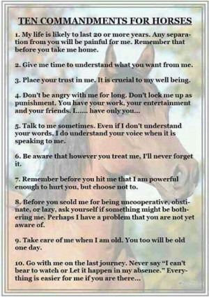 Ten Commandments Quotes. QuotesGram