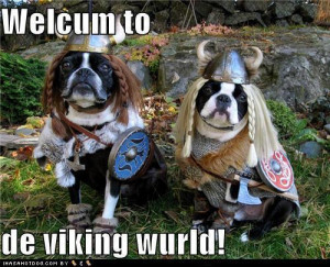 Funny Viking Quotes