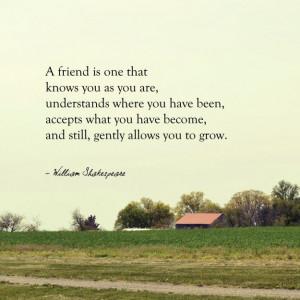Le migliori frasi di Shakespeare sull'amicizia, ecco le citazioni ...