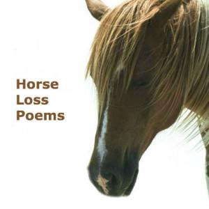 Horse Loss Poems