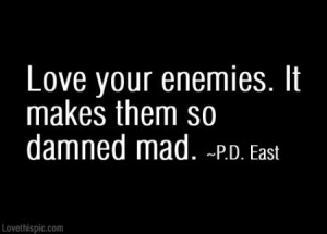 Love Your Enemies love funny quote revenge haters