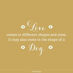 true. dog lovers, pet quotes, puppi
