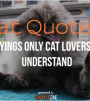cat-quotes-300x336.jpg