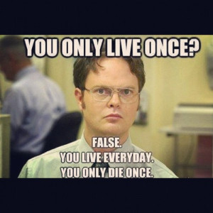 Dwight From The Office Funny Quotes