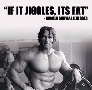 Quotes, 500488 Pixel, Arnold Schwarzenegger Quotes, Arnold Quotes ...