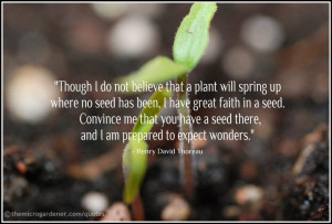 Go Back > Gallery For > Planting Seeds Quotes