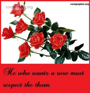 """He who wants a rose must respect the thorn."""""""