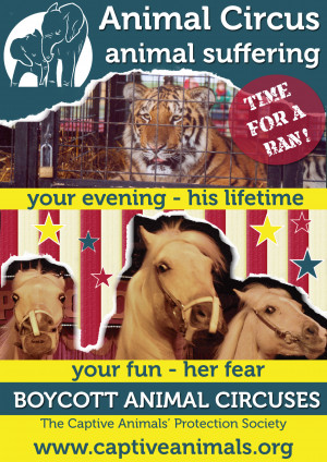 circus leaflets for domestic animals a5 quote code circuslflt11 dom